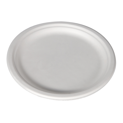 "YesEco Eco Tableware 10"" Bagasse Plate"